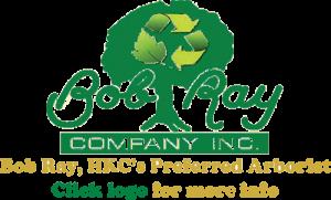 Bob Ray Company Logo